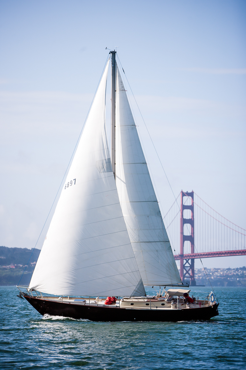 sailing vessel carodon is sailing san francisco bay!